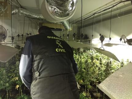 Un agente de la Guardia Civil durante la intervención de la marihuana.